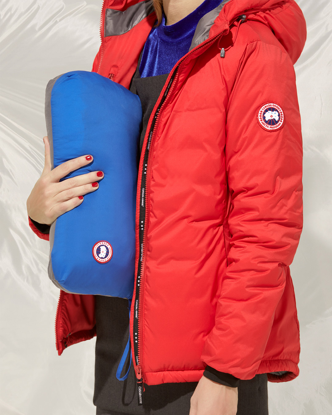 CanadaGoose_02_0824_optim