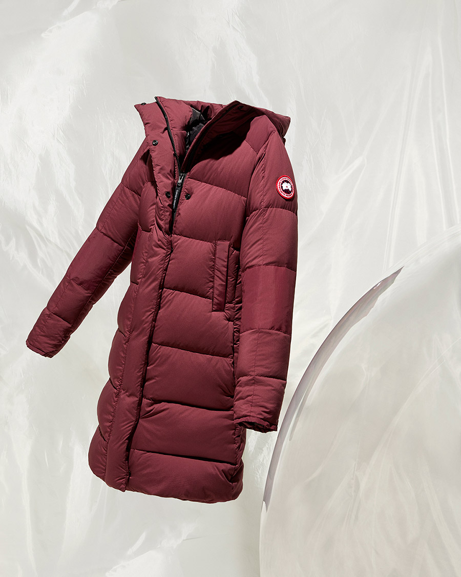NEW_CanadaGoose_12_1912_optim